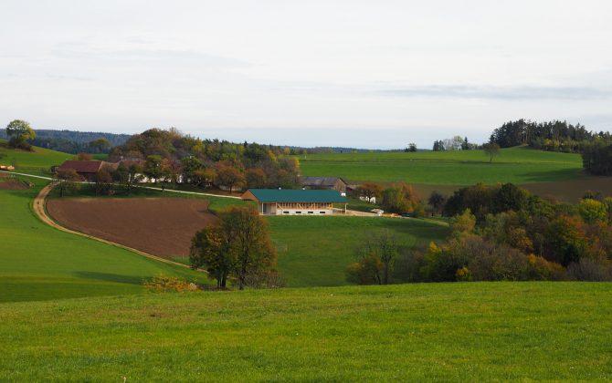 Bio Putenstall der Familie Puchegger in der Buckligen Welt
